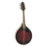 Savannah SA115E ELECTRIC A-STYLE MANDOLIN
